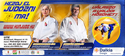 Judo recruiting billboard campaign.