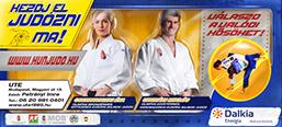 Judo recruiting billboard campaign.